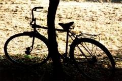 bcicleta